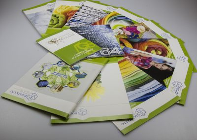 Grafica1_Brochure